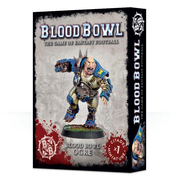 99120999001_BloodBowlOgre05